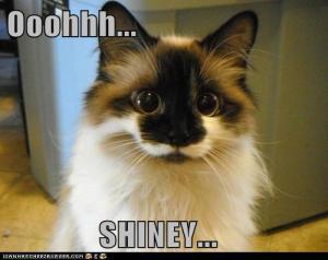 shinycat